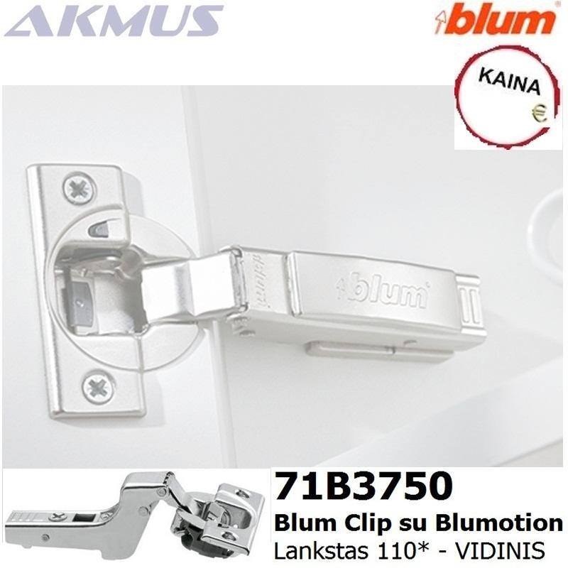 Vidinis Blum